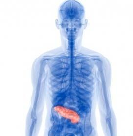 Захворювання панкреатит. Дієта як метод лікування