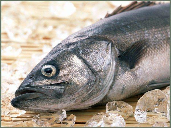 Як визначити свіжість риби по зябер