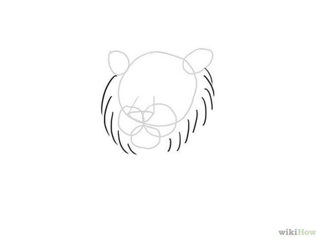 Зображення з назвою Draw a Tiger Step 5