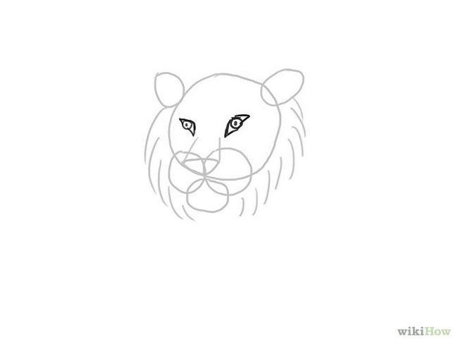 Зображення з назвою Draw a Tiger Step 6