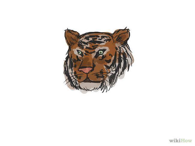 Зображення з назвою Draw a Tiger Step 10