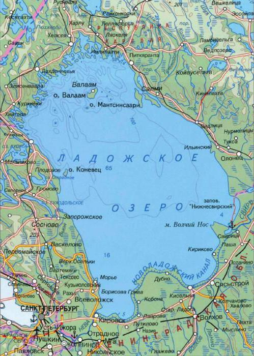 Озеро ладога: опис, глибина, рельєф, риби