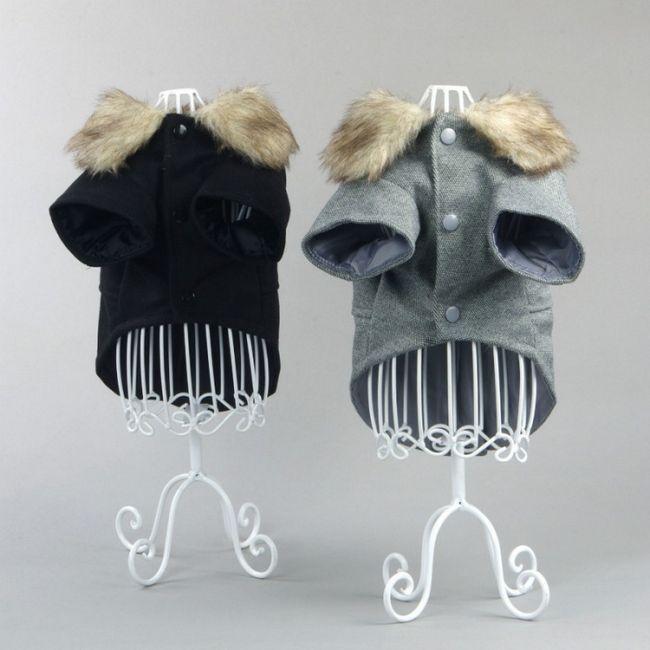 Модні мопси: одяг для вихованців своїми руками і не тільки