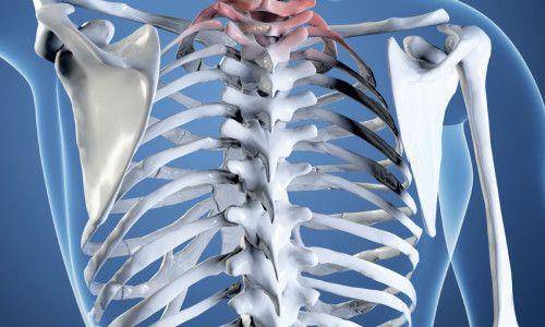 Що показує і як проводиться рентген хребта?