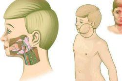 Чи можна вилікувати без наслідків для здоров`я чоловіче безпліддя?