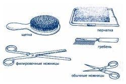 Необхідні інструменти для стрижки