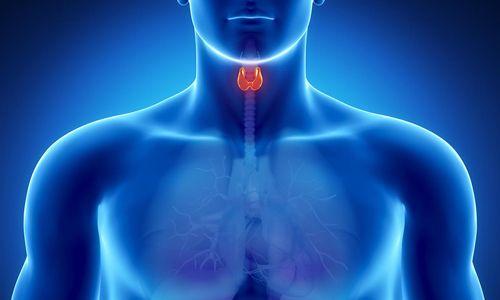 Симптоми і лікування надлишку гормонів щитовидної залози