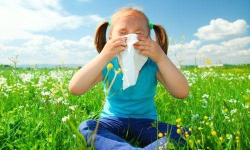Весняна алергія: дієве лікування народними засобами