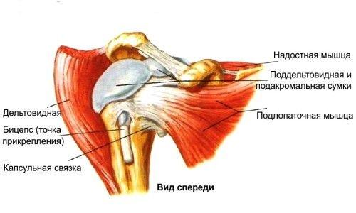 Вилітає плечовий суглоб: що потрібно робити?